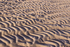 Beach sand ripples Royalty Free Stock Photo