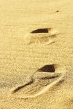 Beach sand several. Sand several background bay beach Royalty Free Stock Photography