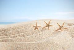 Beach sand and sky background Royalty Free Stock Photos