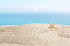 Beach sand and sky background Royalty Free Stock Images