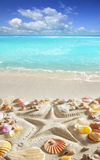 Beach sand starfish print caribbean tropical sea Royalty Free Stock Photo