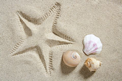 Beach sand starfish print shells Royalty Free Stock Photography