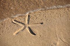 Beach sand with starfish printed Royalty Free Stock Image