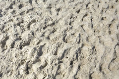 Beach sand in the summer time Royalty Free Stock Photo
