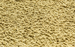 Beach sand surface after the rain. Background, texture, selective focus Stock Images