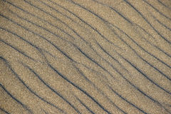Beach sand texture Royalty Free Stock Photos