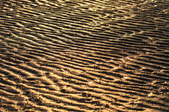 Beach sand waves Stock Image