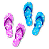 Beach sandals. Vector illustration of beach sandals Stock Images