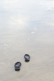 Beach sandals on the sand Royalty Free Stock Photo