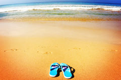 Beach sandals on tropical sandy coast Stock Image