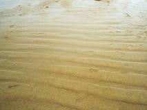 Beach. Sandy beach in Oostende, Belgium Stock Images