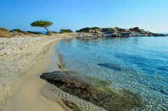 Beach. Sandy beach, stones,  Mediterranean pine tree and green, fluorescent towel in morning sunlight under clear, blue sky, Carydi beach, Chalkidiki, Sithonia Stock Photos