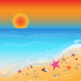 Beach. Sandy beach with the sunset and sea shells Stock Images