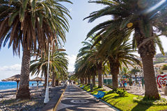Beach in Santa Cruz, Madeira island, Portugal Stock Image