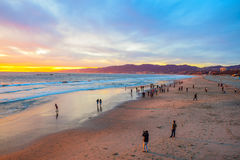 Beach Santa Monica pier at sunset, Los Angeles. Seagull on the beach background Royalty Free Stock Photography