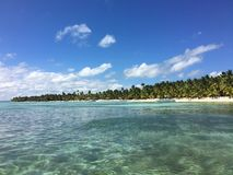 Beach. At Saona Island in Dominican Republic Royalty Free Stock Photos