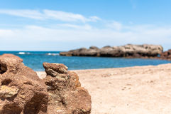 Beach in sardinia. In a sunny day of summer Royalty Free Stock Photos