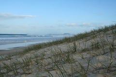 Beach Scene. A beach scene with dunes at Broadbeach, Australia Stock Images