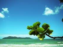 Beach Scene Royalty Free Stock Image
