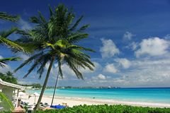 A beach scene. In Barbados Stock Photography