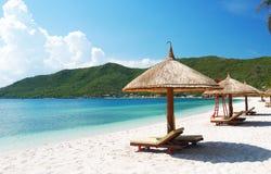 Beach Scene. Tropics, Pacific ocean royalty free stock photos