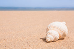 Beach scene with copy space Royalty Free Stock Images