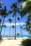 Beach scene in the Dominican Republic Royalty Free Stock Photography
