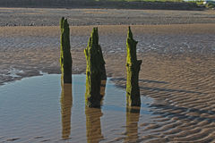Beach Scene, near Silloth, Cumbria, Lake District. Wooden beach posts, near Silloth Cumbria, Lake District, England Stock Images