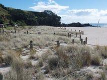 Beach scene New Zealand Stock Photography