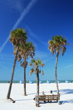 Beach Scene with Palms Royalty Free Stock Photos