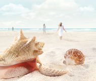 Beach scene with people walking and seashells Stock Photo