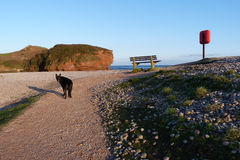 A beach scene in South West England. Budleigh Salterton East Devon in South West England where the River Otter joins the sea Stock Images