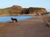 A beach scene in South West England Royalty Free Stock Image