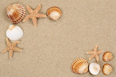 Beach scene in summer cacation with sand, sea shells, stars and Royalty Free Stock Photography