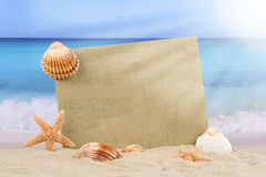 Beach scene in summer with sea shells, stars and copyspace Stock Photos