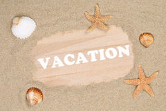 Beach scene in summer on vacation with sand, sea shells and star Stock Photos