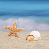 Beach scene in summer on vacation with sea and copyspace Stock Photo