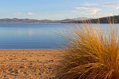 Beach scene, Tasmania Stock Images