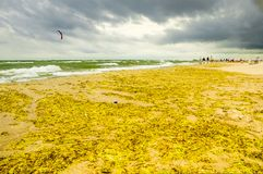 A windy day at Warneminde, Rostock Germany Stock Image