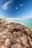 Beach scenery with pine tree in Croatia, Istria, Europe stock images