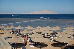 Beach scenes holiday resort egypt sharm el sheikh bay. Beach parasols on egyptian holiday resort beach palm tree jetty Stock Image