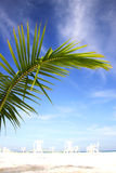 Beach Scenic Stock Photography