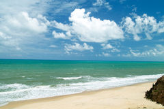 Beach scenic. Brazil Stock Photography