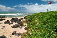 Beach scenic.Praia do Pipa, Brazil stock photos