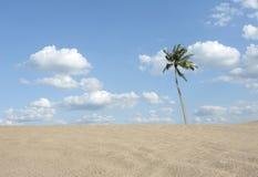 Beach sea Stock Image
