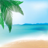 Beach and sea background with palm branch Stock Photo