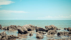 Beach and sea with blue sky and reef rock beach Stock Photo