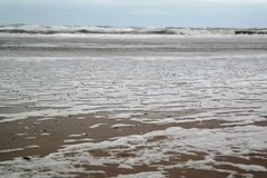 Beach, sea, foam, waves and sky Royalty Free Stock Photo