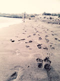 Beach, Sea and Footprints Royalty Free Stock Photo