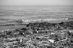Beach and sea pollution in black and white.  Stock Photo